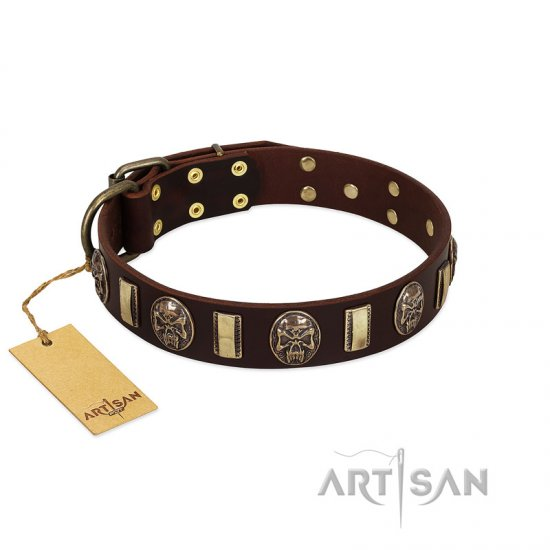 """Skull's Adventure"" FDT Artisan Brown Leather German Shepherd Collar with Plates and Ovals"