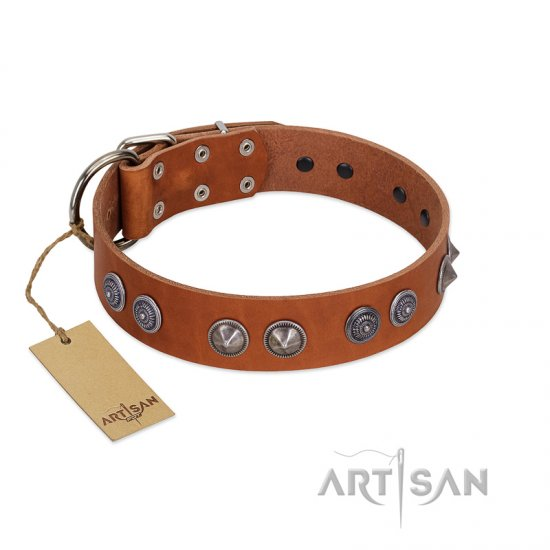 """Silver Necklace"" Incredible FDT Artisan Tan Leather German Shepherd Colar with Silver-Like Adornments"