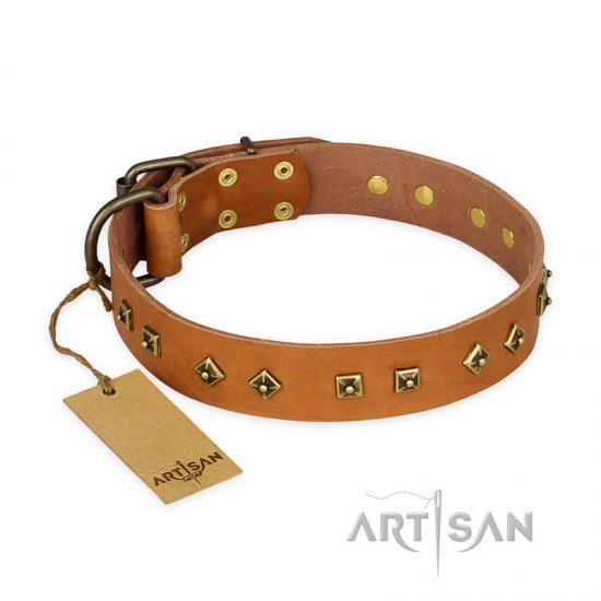 """Autumn Story"" FDT Artisan Leather German Shepherd Collar with Old Bronze Look Studs"