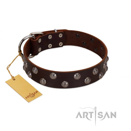 """Blossom Jewel"" FDT Artisan Brown Leather German Shepherd Collar with Two Rows of Silver-like Studs with Engraved Flowers"