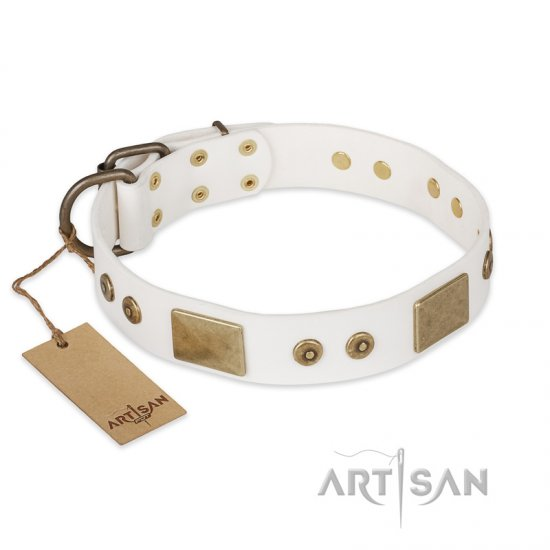 """Unforgettable Impress"" FDT Artisan Decorated Leather German Shepherd Collar with Decorations"
