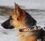 Flames Leather German Shepherd Dog Collar - Hand Painted By Our Artists