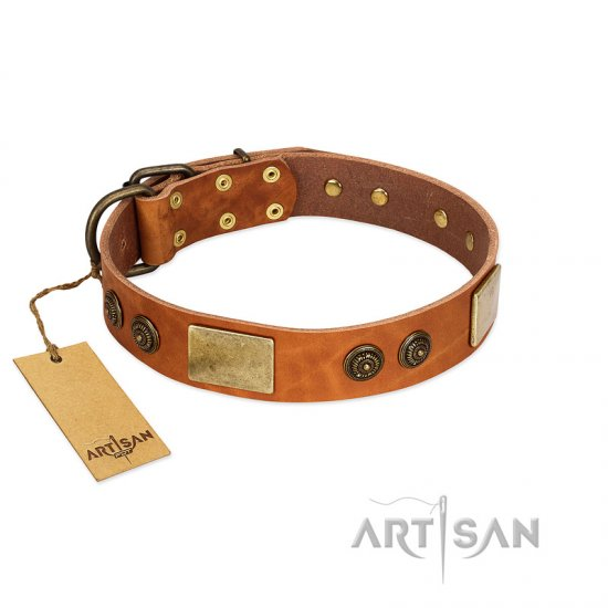 """Bronze Century"" FDT Artisan Tan Leather German Shepherd Collar with Plates and Brooches with Cool Ornament"