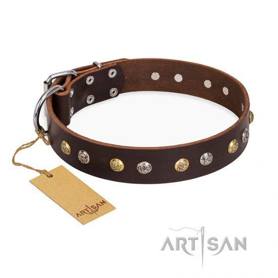 """Rare Flower"" FDT Artisan Brown Leather German Shepherd Collar Adorned with Old-look Hemisphere Studs"