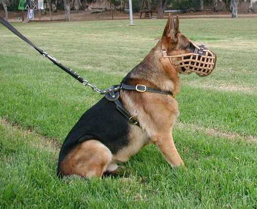 Handmade best dog muzzle fog German-Shepherd