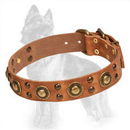Leather German Shepherd Collar with Brass Studs and Circles