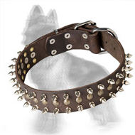 Leather German Shepherd Collar with Brass Studs and Nickel Spikes