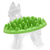 Healthy German Shepherd Feeder for Small Dogs