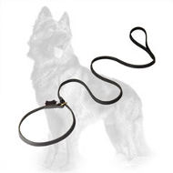 Leather German Shepherd Leash/Collar Combo with Handle
