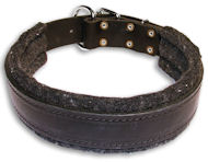 Padded Black collar 24'' for Alsatian Dog/24 inch dog collar-C24
