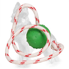 Dotted Rubber German Shepherd Ball Attached to String