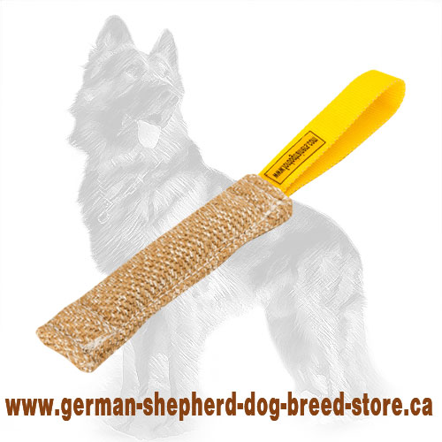 Pocket Jute German Shepherd Bite Tug for Puppy Training