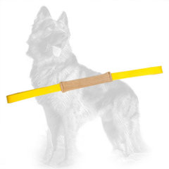 Pocket Leather German-Shepherd Bite Tug for Puppies