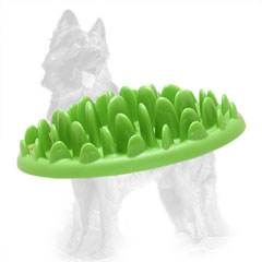 Plastic German-Shepherd Feeder for Healthy Eating