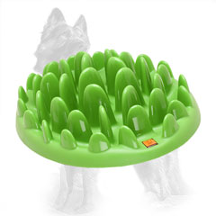 Plastic German-Shepherd Plate with Grass Shape