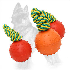 German Shepherd Rubber Balls for Playing or Training  Your Dog