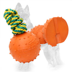 German Shepherd Water Ball with Bright Design