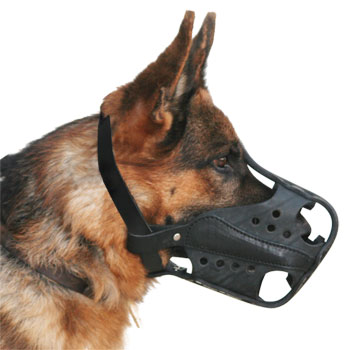 Hard Dogs Leather Working Dog Muzzle - Training Leather  Muzzles