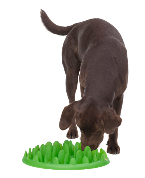 Plastic Grass Dog Plate for Big Breeds