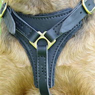 Tracking / Walking dog harness made of leather