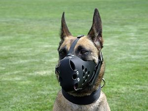 german shepherd muzzle- leather dog muzzle for german  shepherd