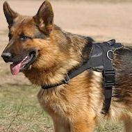Nylon multi-purpose dog harness for tracking/pulling-dog harness