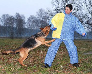 k9 police  bite suit, body bit suite for schutzhund training
