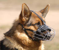 dog muzzle for gsd