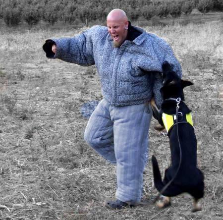 dog training body bite suit