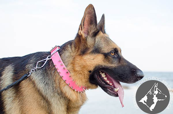 Adjustable German-Shepherd Collar of Pleasant to Touch Leather