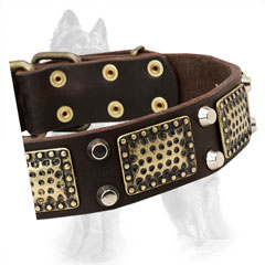 Embossed Brass Plates and Nickel Pyramids on German Shepherd Collar Strap