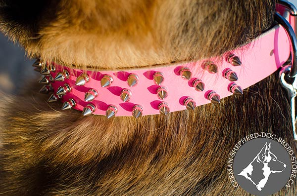 Exquisite Leather German Shepherd Collar with Symmentical Hand Set Spikes