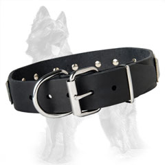German Shepherd Buckled Leather Collar Equipped with Rustproof Nickel Covered Hardware