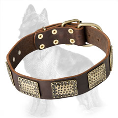 German Shepherd Leather Collar Decorated with Original Massive Brass Plates