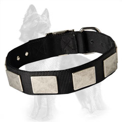 German Shepherd 2 Ply Nylon Dog Collar Well Stitched