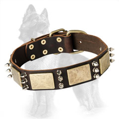Extravagant Leather German Shepherd Dog Collar With Old  Brass Plates And 3 Nickel Spikes Between Them
