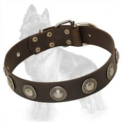 Leather German-Shepherd Dog Collar Decorated With  Nickel Circles
