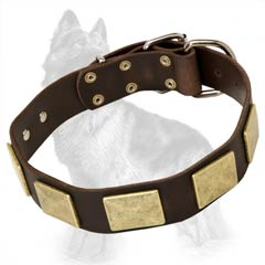 Leather German-Shepherd Dog Collar Decorated With Brass Massive Plates