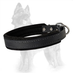 Carefully Stitched Leather German Shepherd Dog Collar  With Soft Thick Felt Padding