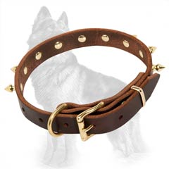 German-Shepherd Buckled Leather Dog Collar Brown Equipped with Brass Fittings