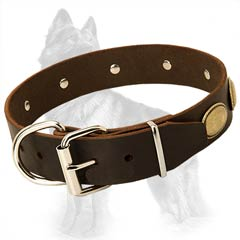 German-Shepherd Buckled Leather Dog Collar Equipped with Rustproof Nickel Covered Fittings