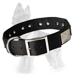 German Shepherd Buckled Nylon Dog Collar Decorated with Nickel Plates