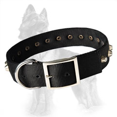 German Shepherd Buckled Nylon Dog Collar Decorated with Nickel Pyramids