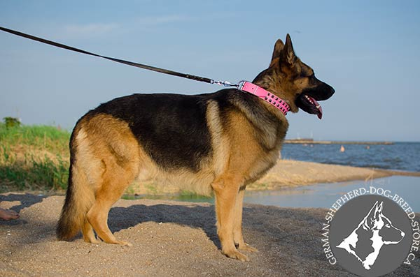 Caterpillar Design Pink Leather German Shepherd Collar