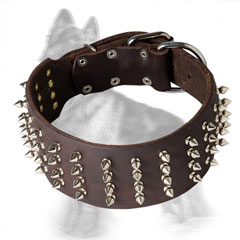 Leather German Shepherd Collar Decorated with 4 Rows Nickel Plated Spikes