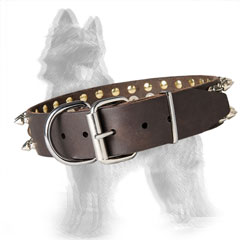 Spiked Leather German Shepherd Collar with Brass Studs and Nickel Plated Hardware