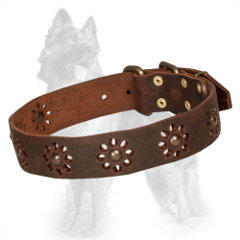 Brown Leather German Shepherd Collar with Brass Studded Flowers