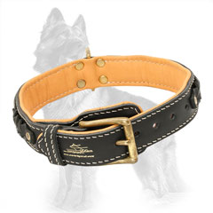 Buckled Leather German Shepherd Collar Padded and Braided
