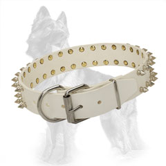 White Leather German Shepherd Collar Spiked with Buckle