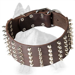 Extra Wide Leather German Shepherd Collar Decorated with Nickel Plated Spikes and Studs